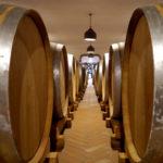 Wein-Geheimtipp: Das Friaul und seine autochtonen Trauben